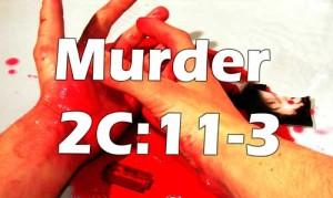 NJ Murder Attorney